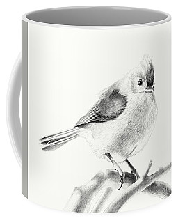 Bird On A Branch Coffee Mug