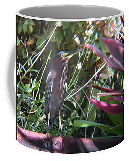 Bird On Bath Coffee Mug by Val Oconnor