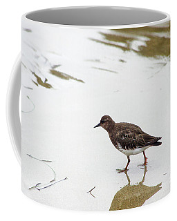 Coffee Mug featuring the photograph Bird Walking On Beach by Mariola Bitner