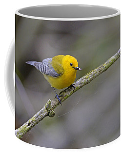 Birder's Dream Coffee Mug