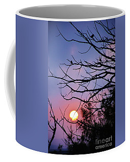 Birds At Sunset Coffee Mug by Craig Wood