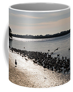 Birds At The Beach Coffee Mug
