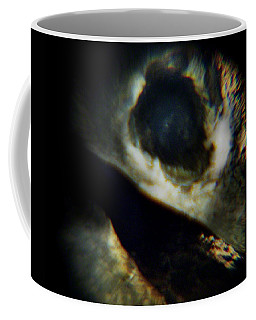 Bird's Eye Coffee Mug