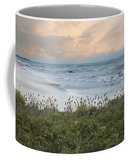 Coffee Mug featuring the photograph Bird's Eye View by Robin-Lee Vieira