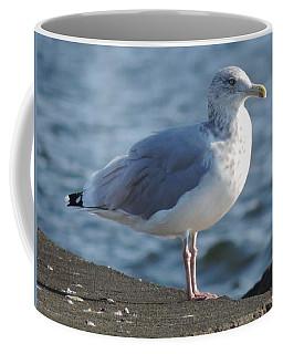Birds In The Air  Coffee Mug