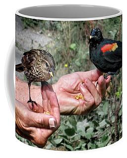 Birds In The Hands Coffee Mug by Jennie Breeze