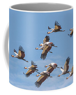 Birds Of The Same Feather. Coffee Mug