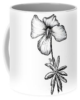 Birdsfoot Violet Coffee Mug