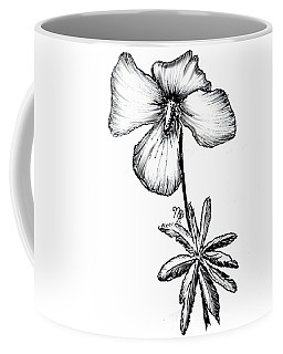 Birdsfoot Violet Coffee Mug