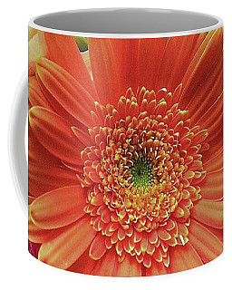 Birthday Daisy Bouquet Coffee Mug by Ellen O'Reilly