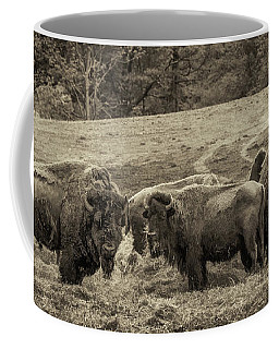 Coffee Mug featuring the photograph Bison 1 - Pano by Joye Ardyn Durham