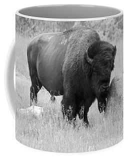 Bison And Buffalo Coffee Mug