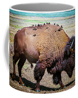 Coffee Mug featuring the photograph Bison And The Birds by Mary Hone