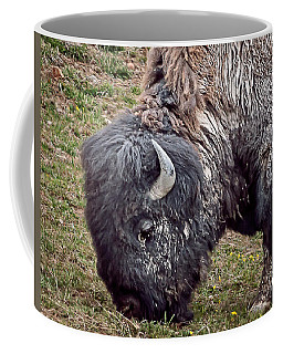 Bison Dirt Coffee Mug