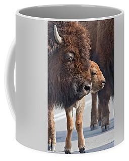 Bison Family Coffee Mug