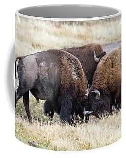 Bison Fight Coffee Mug
