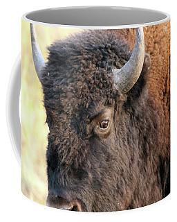 Bison Head Study Coffee Mug