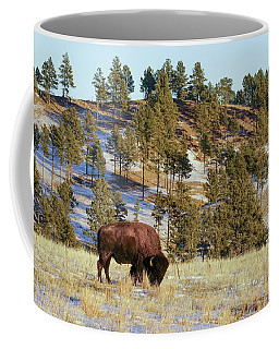 Bison In Custer State Park Coffee Mug