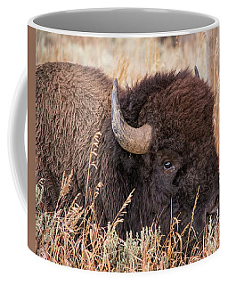Coffee Mug featuring the photograph Bison In The Grass by Mary Hone