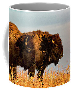 Coffee Mug featuring the photograph Bison Pair by Jay Stockhaus
