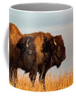 Bison Pair Coffee Mug by Jay Stockhaus