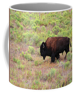 Bison1 Coffee Mug