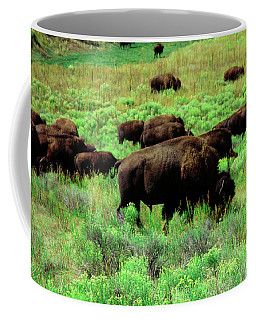 Bison2 Coffee Mug