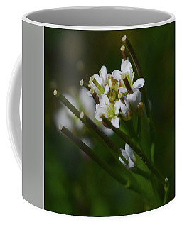 Bittercress 2 Coffee Mug