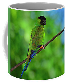 Coffee Mug featuring the photograph Black And Blue by Tony Beck