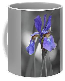 Coffee Mug featuring the photograph Black And White Blue Bearded Iris by Brenda Jacobs