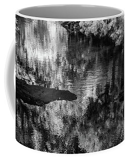 Black And White Reflection Coffee Mug