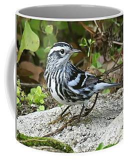 Black And White Warbler Coffee Mug by Myrna Bradshaw