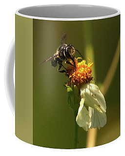 Black And Yellow Bee Pollinating Coffee Mug