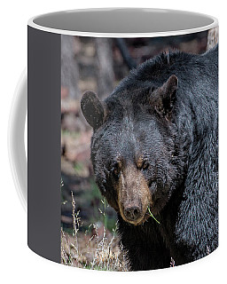 Black Bear 2 Coffee Mug