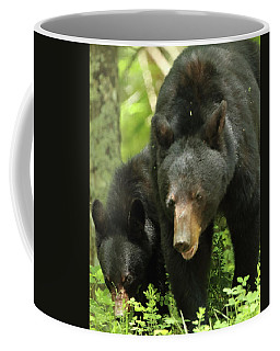 Black Bear And Cub On Ground Coffee Mug