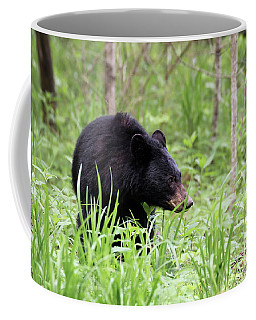 Coffee Mug featuring the photograph Black Bear by Andrea Silies
