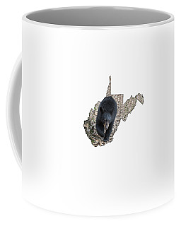 Black Bear Coming Close Coffee Mug