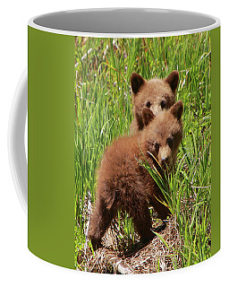 Black Bear Cubs Coffee Mug