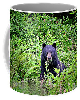 Coffee Mug featuring the photograph Black Bear Eating His Veggies by Peggy Collins