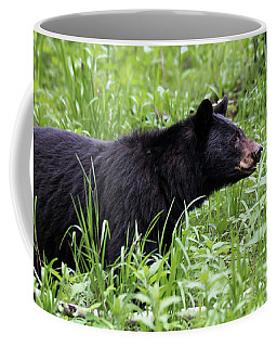 Coffee Mug featuring the photograph Black Bear In The Woods by Andrea Silies