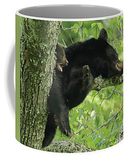 Black Bear In Tree With Cub Coffee Mug