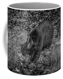 Black Bear Salmon Seeker Coffee Mug