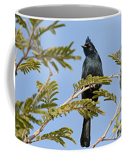 Black Beauty Coffee Mug by Fraida Gutovich