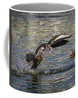 Black-bellied Whistling Duck Coffee Mug by Ronald Lutz