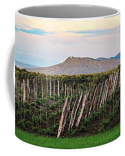 Black Birch Vineyard And Summit House View Coffee Mug