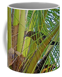 Black Bird In Tree Coffee Mug