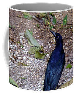 Black Bird On Branch Coffee Mug