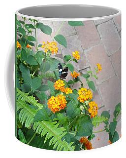 Black Blue Butterfly Gold Flowers Coffee Mug