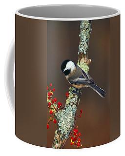 Black-capped Chickadee Bird On Tree Coffee Mug