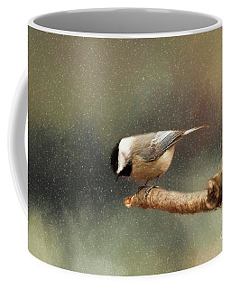 Coffee Mug featuring the photograph Black Capped Chickadee by Darren Fisher
